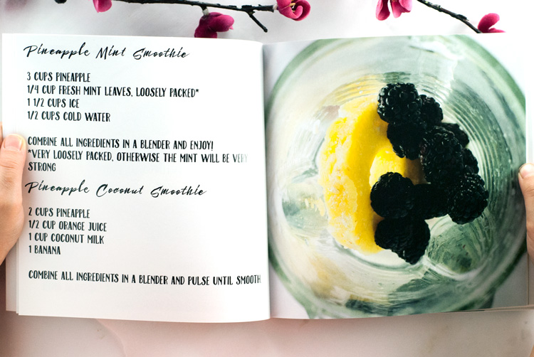 The Best Damn Smoothies Recipe Book   asimplepantry.com