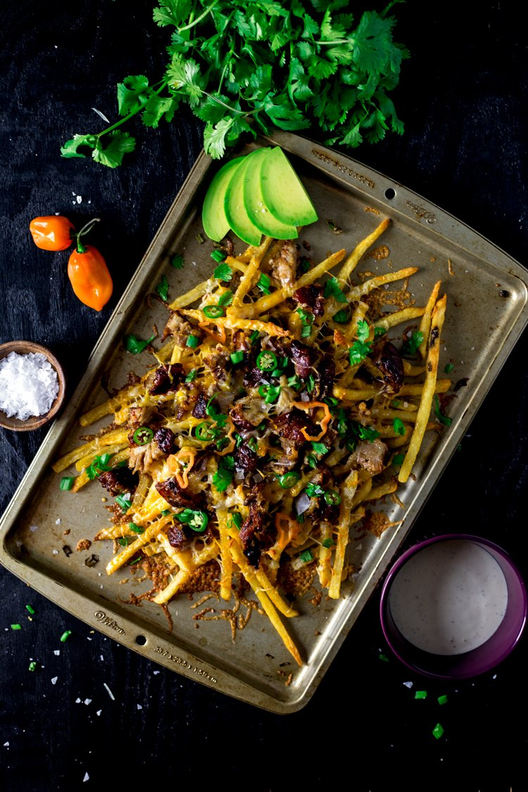 Spicy-Southwestern-Cheese-Fries-3