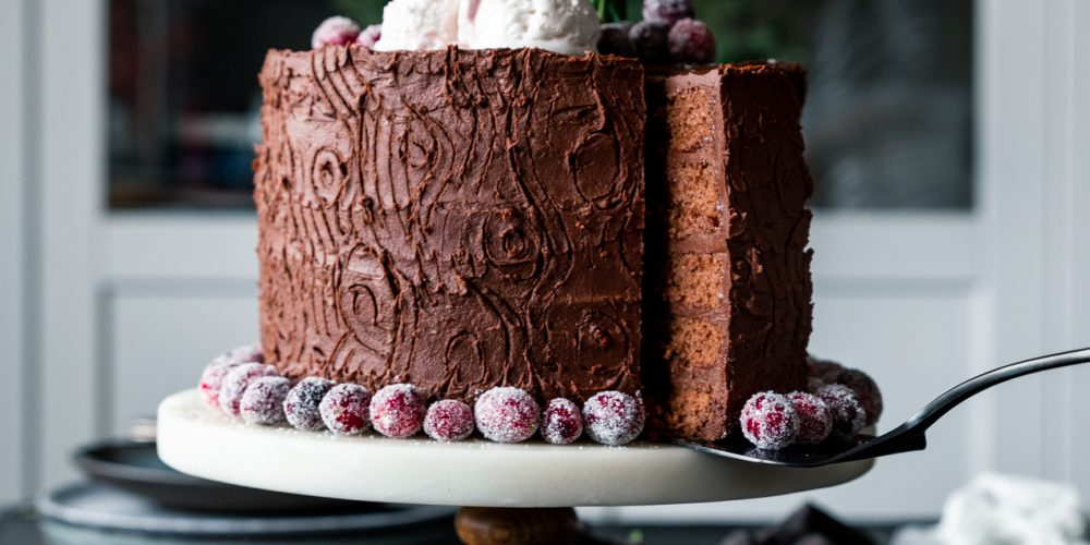 Double Chocolate Tree Stump Cake with Sugared Cranberries