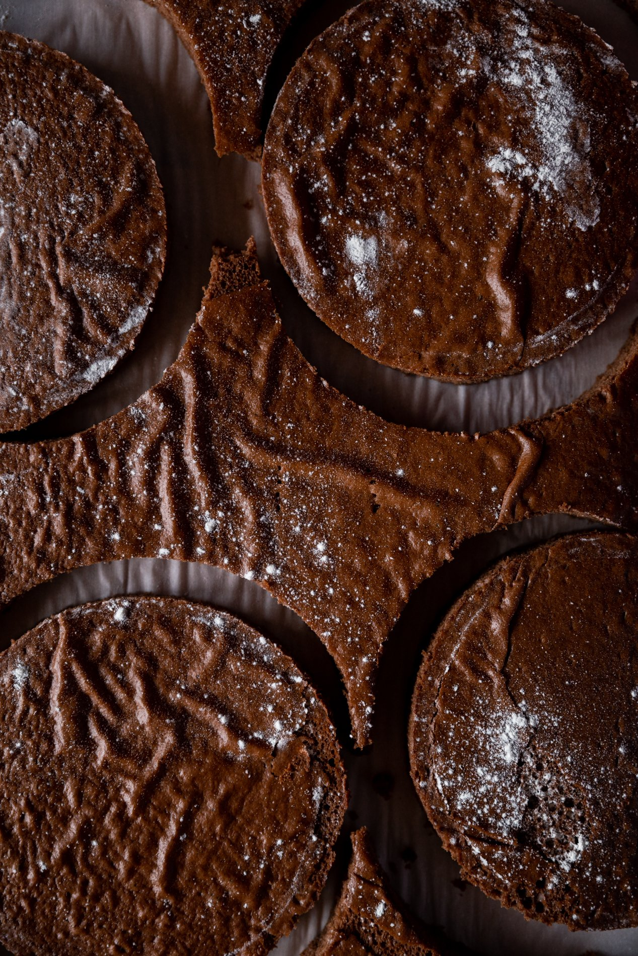 overhead view of a slab of chocolate cake with circles cut out of it, lightly dusted with flour.